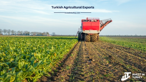 Turkish agricultural exports to Saudi Arabia and Land Investment